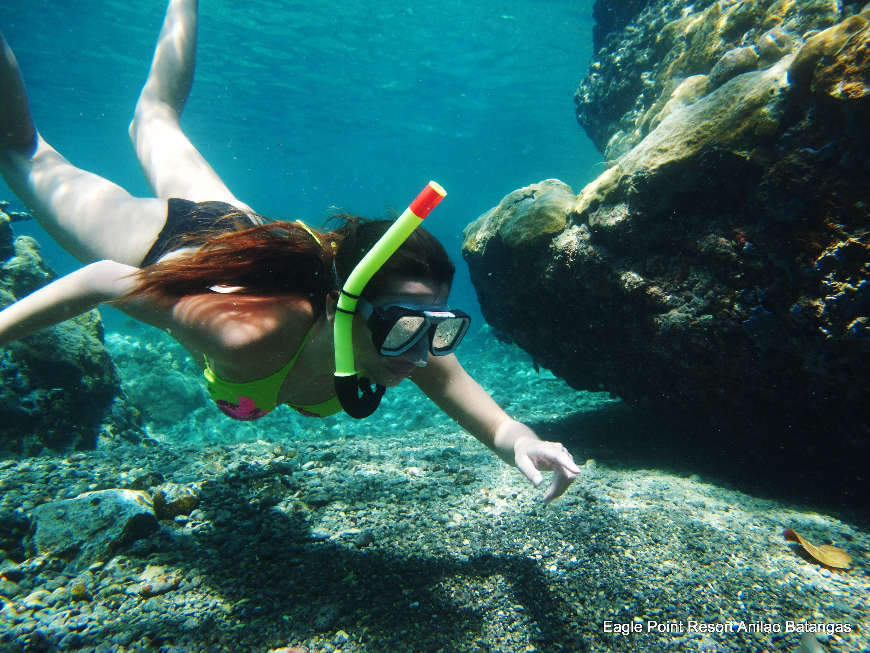 Anilao Diving Resort Snorkeling Philippines Photos