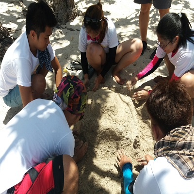 Beaches in Batangas: Lets Rock with Arkone Solutions Inc. in Batangas!