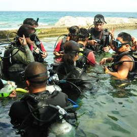 Intro Scuba Diving with Overnight Package
