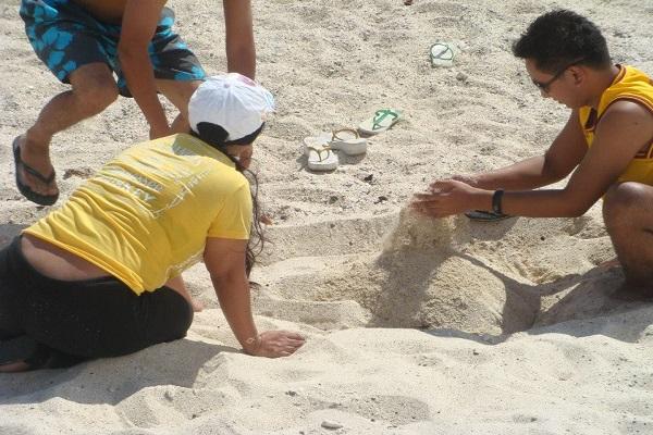 dive_resort_anilao_team_building_venues_in_batangas_04
